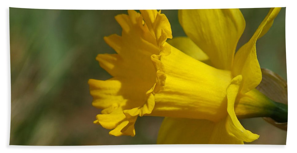 Flower Bath Sheet featuring the photograph Rest In Peace Sherry Holder Hunt by Ernie Echols