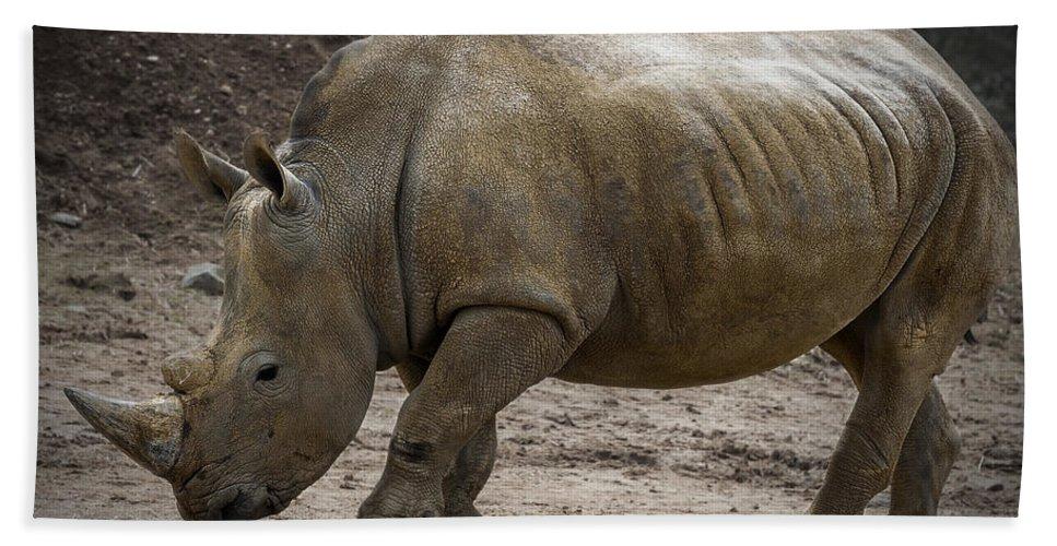 Rhinoceros Hand Towel featuring the photograph Rhinoceros by Svetlana Sewell