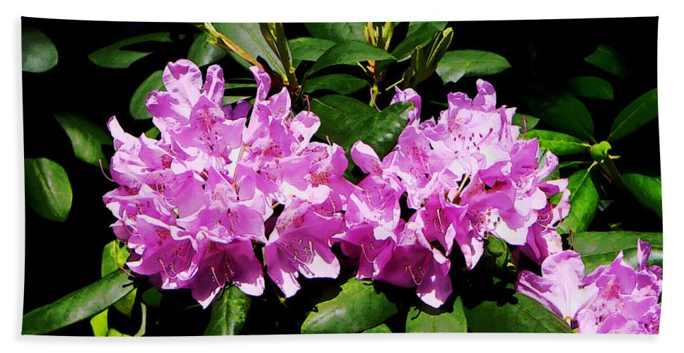 Rhododendron Bath Sheet featuring the photograph Rhododendron Closeup by Susan Savad