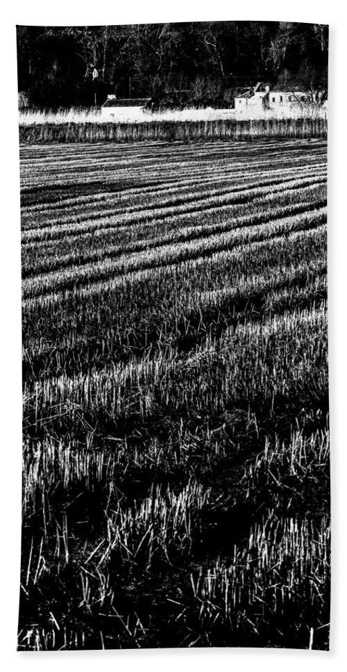 Rice Paddies Bath Sheet featuring the photograph Rice Paddies by Edgar Laureano