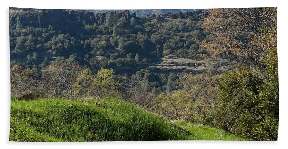 Butte Creek Canyon Hand Towel featuring the photograph Ridge View by Michele Myers