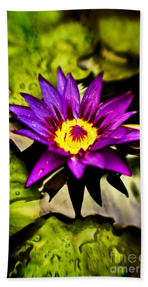 Flower Hand Towel featuring the photograph Rise And Shine by Scott Pellegrin