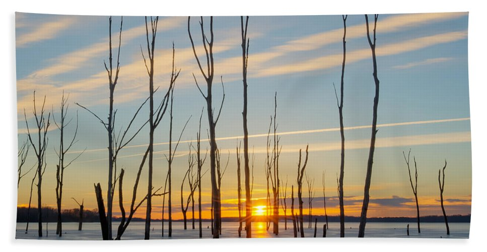 Frost Bite Hand Towel featuring the photograph Rising Throught The Sticks by Michael Ver Sprill