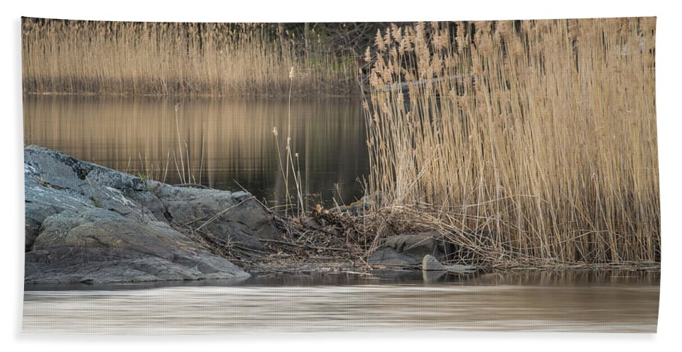 River Hand Towel featuring the photograph River Rock And Reeds by David Stone