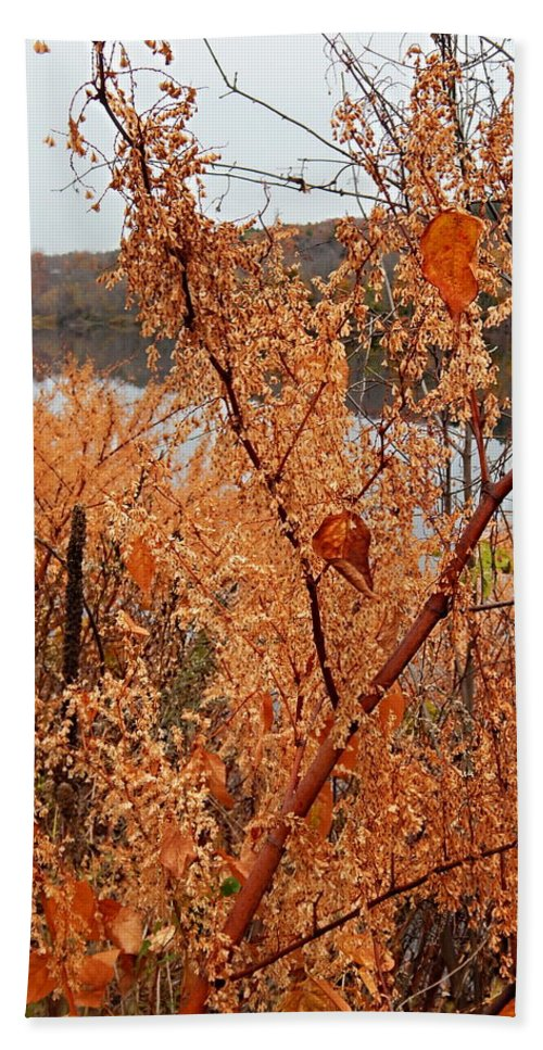 Autumn Foliage On The Kennebec Riverbank Hallowell Maine Bath Sheet featuring the photograph River Side Foliage Autumn by Expressionistart studio Priscilla Batzell