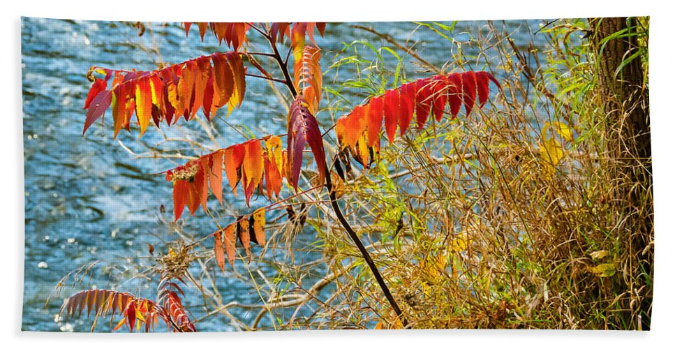 River Bath Sheet featuring the photograph River Sumac by Steve Harrington
