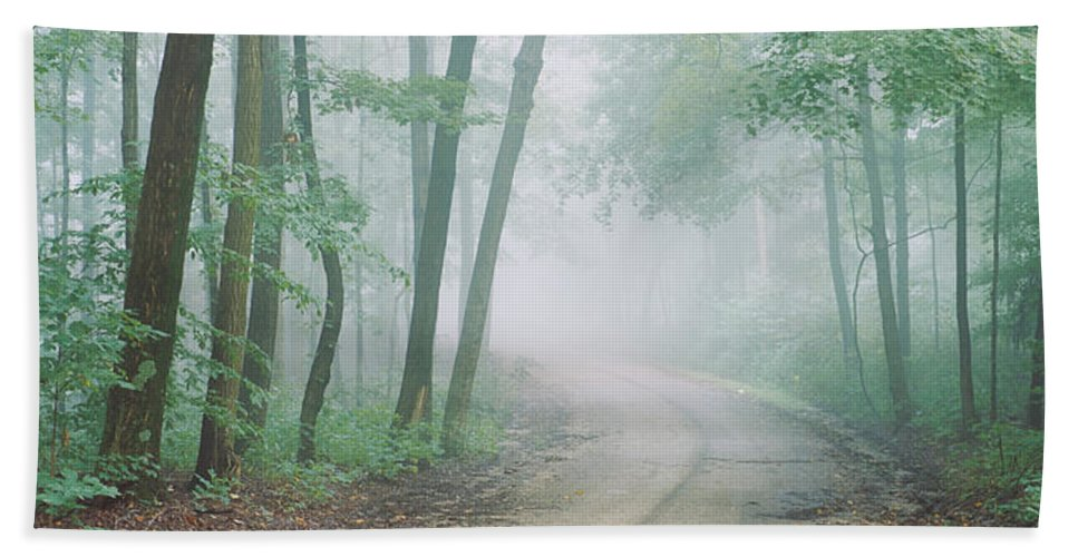 Photography Hand Towel featuring the photograph Road Passing Through A Forest, Skyline by Panoramic Images
