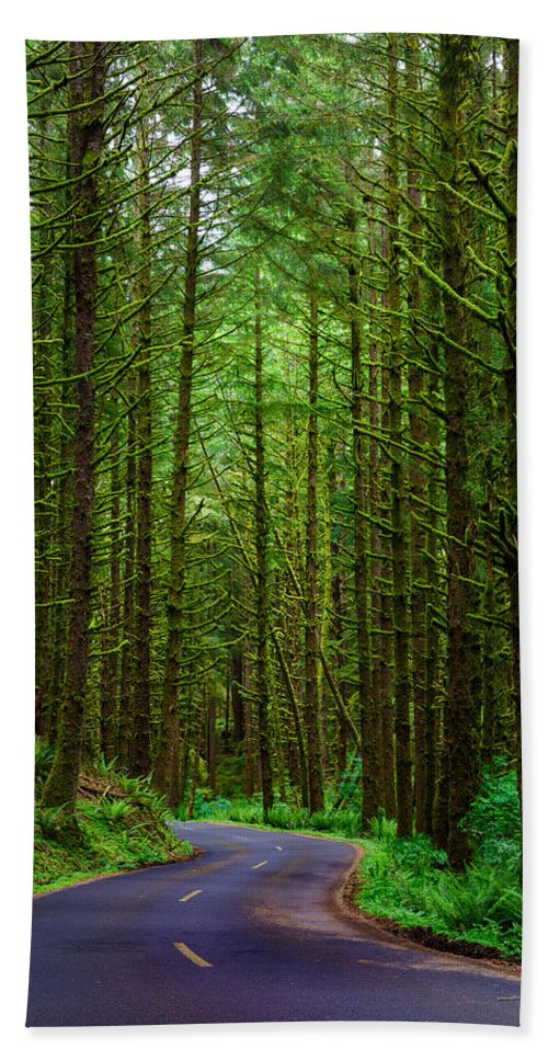 Ecola State Park Bath Sheet featuring the photograph Road Through The Woods by Rick Berk
