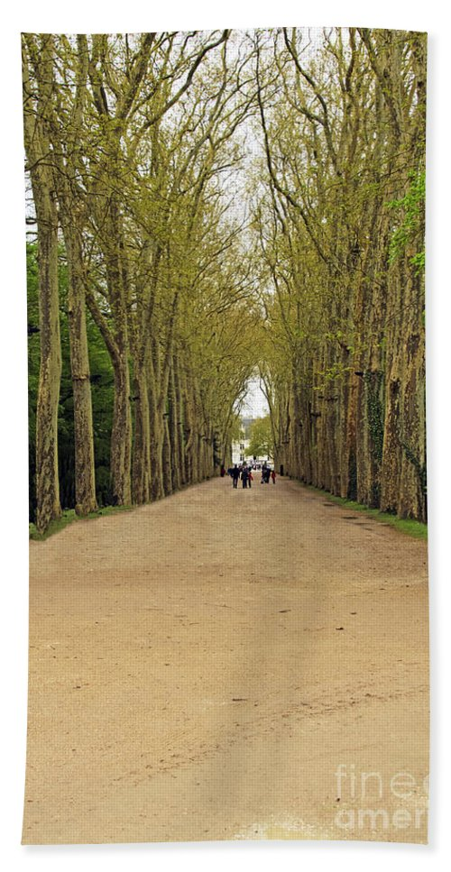 Travel Bath Sheet featuring the photograph Road To Chenonceau by Elvis Vaughn