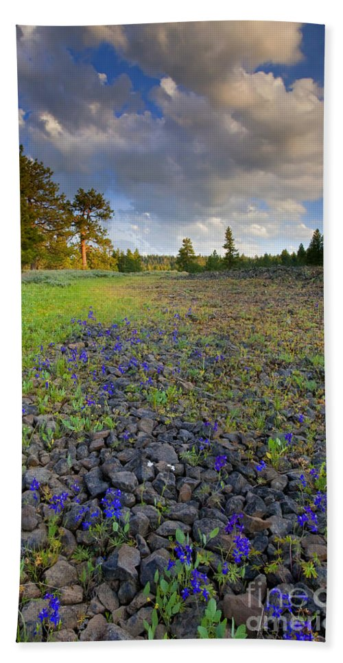 Larkspur Bath Sheet featuring the photograph Rocky Prairie Cloud Explosion by Mike Dawson