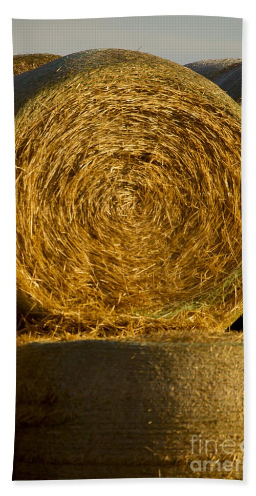 Hay Hand Towel featuring the photograph Rolled Hay  #1074 by J L Woody Wooden