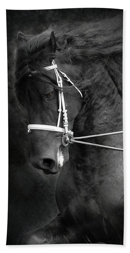 Friesian Hand Towel featuring the photograph Romke 401 Long Line by Fran J Scott