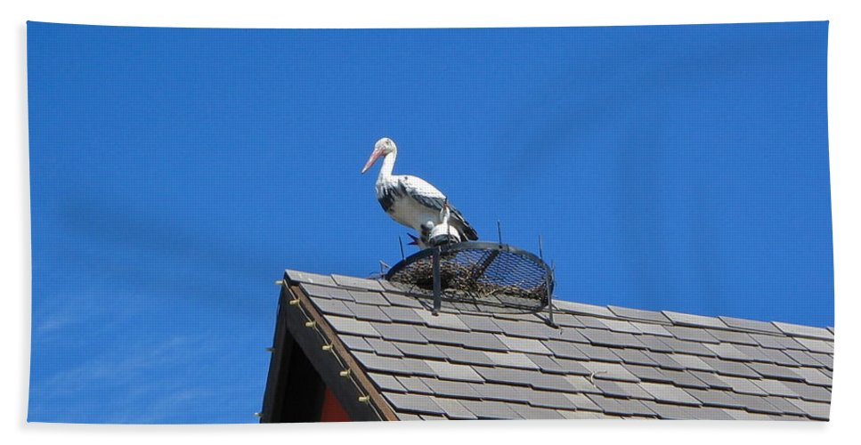 Roof Top Bath Sheet featuring the photograph Roof Top Bird by Denise Mazzocco