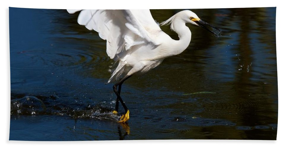Wildbird Rookery Hand Towel featuring the photograph Rookery 15 by David Beebe