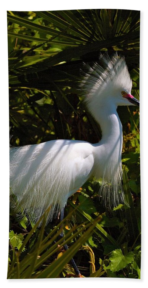 Wildbird Rookery Hand Towel featuring the photograph Rookery 9 by David Beebe