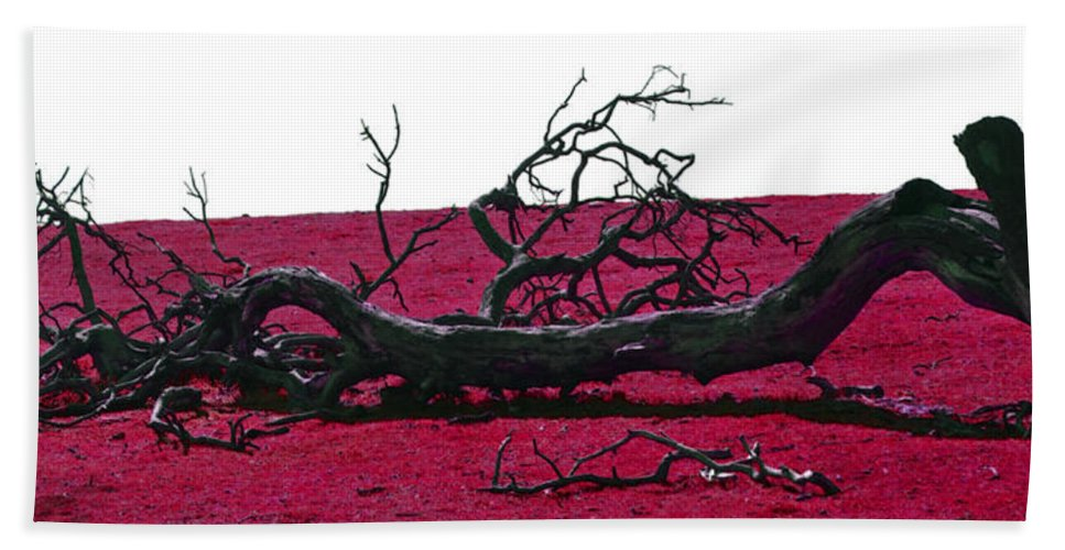 Tree Bath Sheet featuring the photograph Rooted In Red by Holly Blunkall
