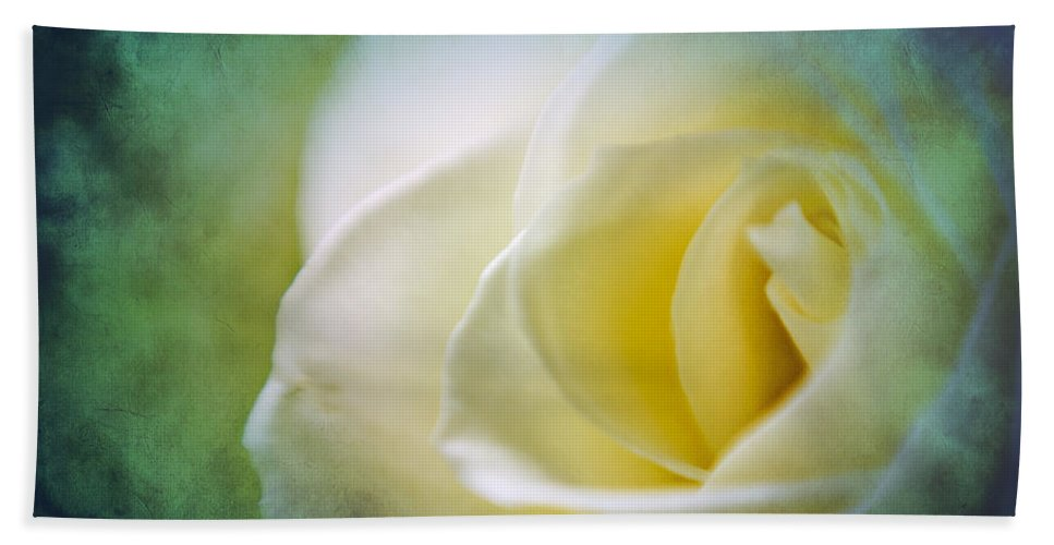 Rose Bath Sheet featuring the photograph Rose Again by Beverly Stapleton