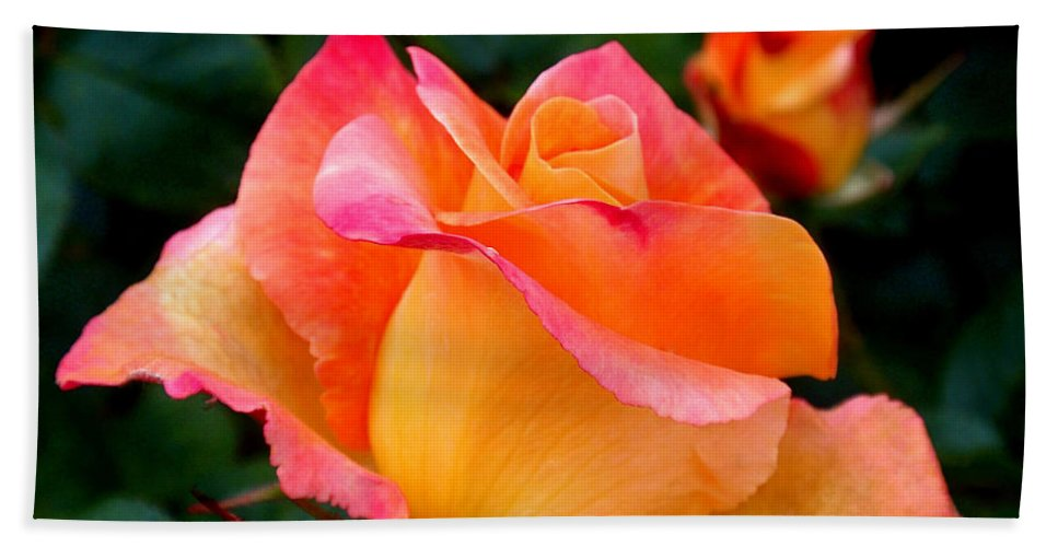Rose Bath Towel featuring the photograph Rose Beauty by Rona Black