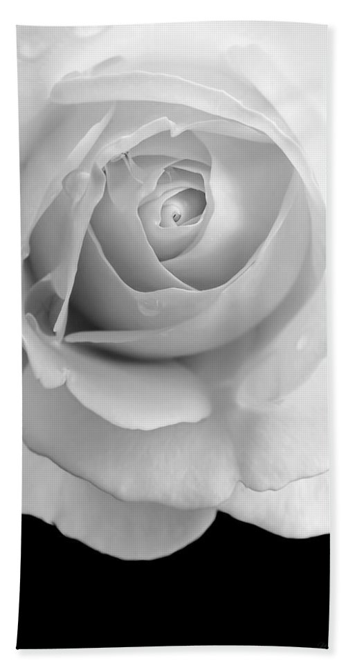 Rose Hand Towel featuring the photograph Rose Flower Macro Black And White by Jennie Marie Schell
