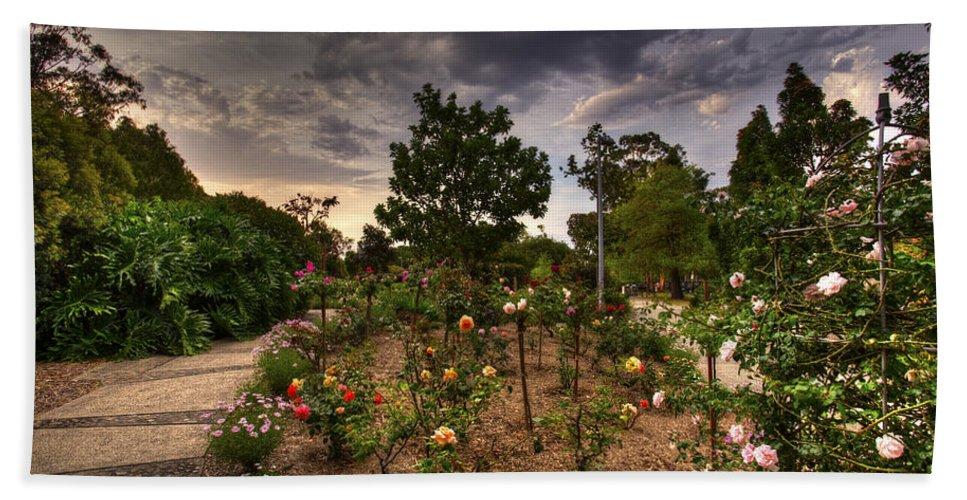 Rose Hand Towel featuring the photograph Rose Garden by Darren Burton