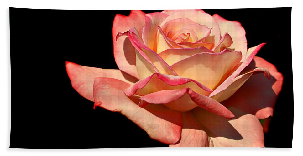 Rose Bath Sheet featuring the photograph Rose On Black Background by Nikolyn McDonald