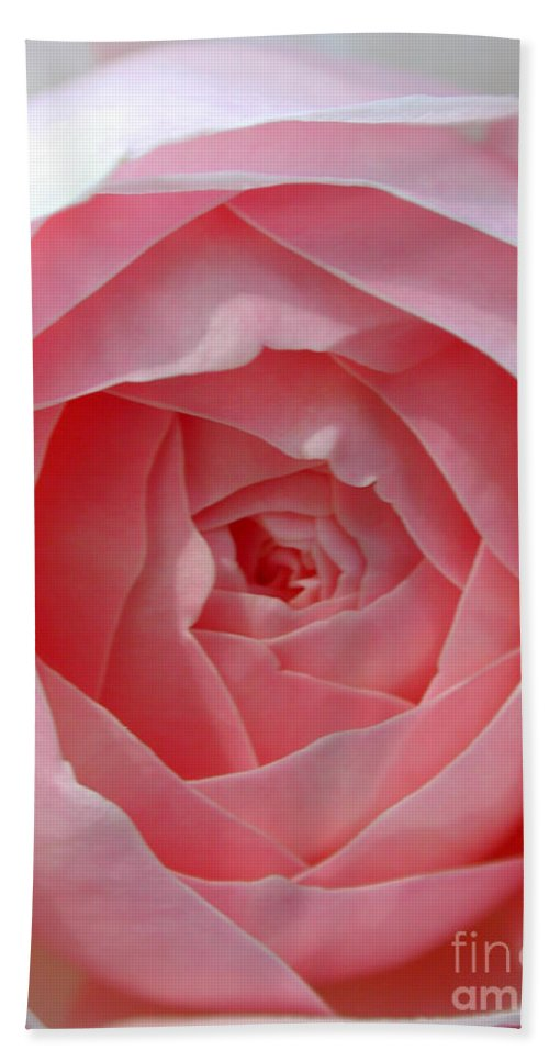 Rose Hand Towel featuring the photograph Rose Opening by Susan Bloom