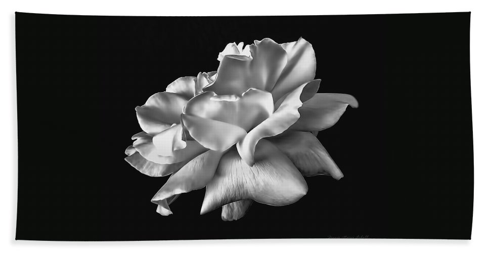 Rose Hand Towel featuring the photograph Rose Petals In Black And White by Jennie Marie Schell