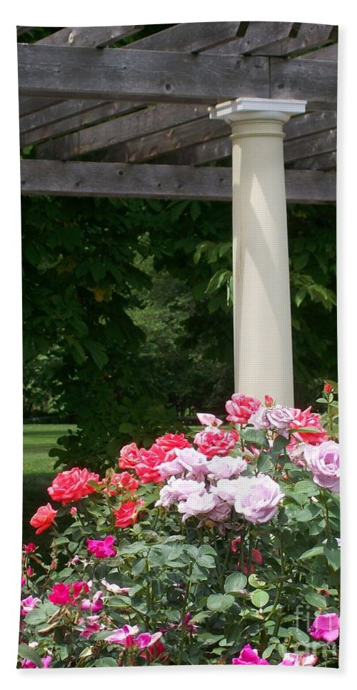 Rose Hand Towel featuring the photograph Roses And Pergola by Laurie Eve Loftin