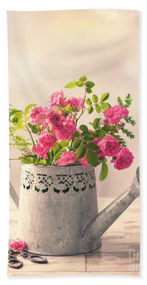 Pink Bath Sheet featuring the photograph Roses In Watering Can by Amanda Elwell