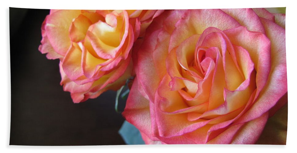Flower Bath Sheet featuring the photograph Roses On Dark Background by Anita Burgermeister