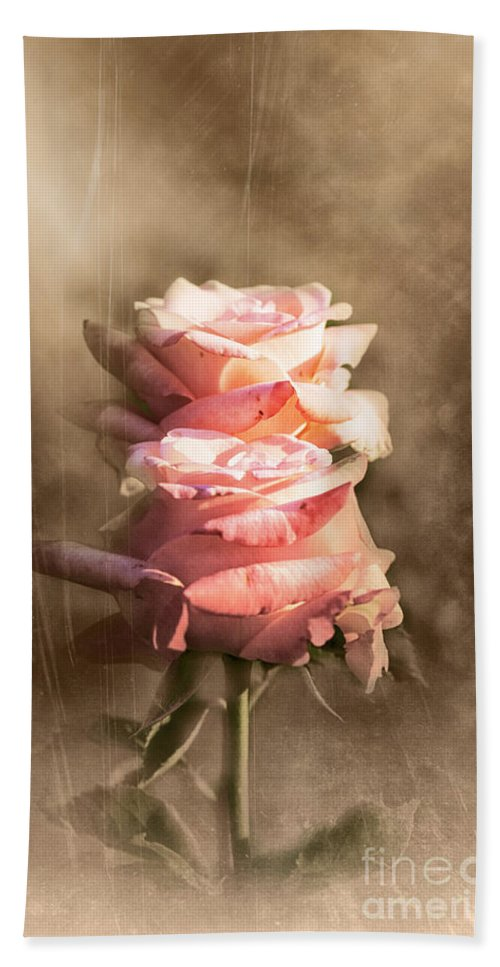 Rose Hand Towel featuring the photograph Roses by Stefano Senise