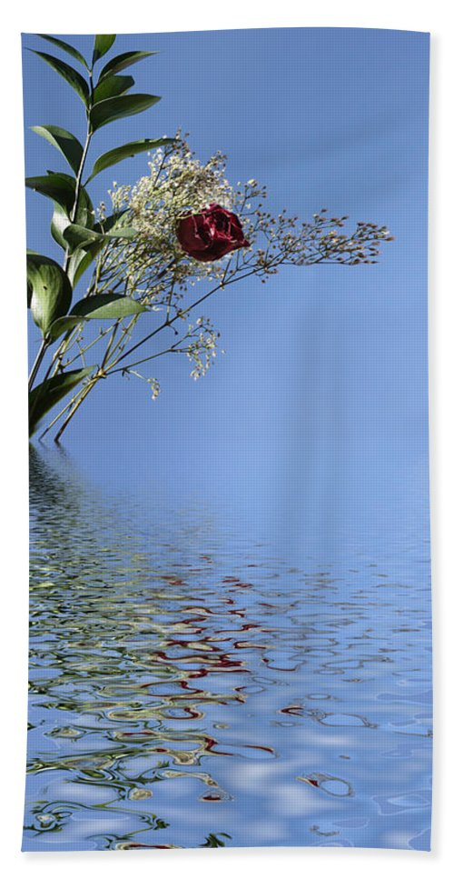 Roses Hand Towel featuring the photograph Rosy Reflection - Left Side by Gravityx9 Designs