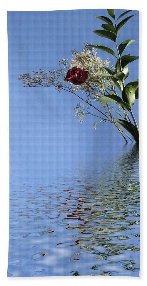 Roses Hand Towel featuring the photograph Rosy Reflection - Right Side by Gravityx9 Designs