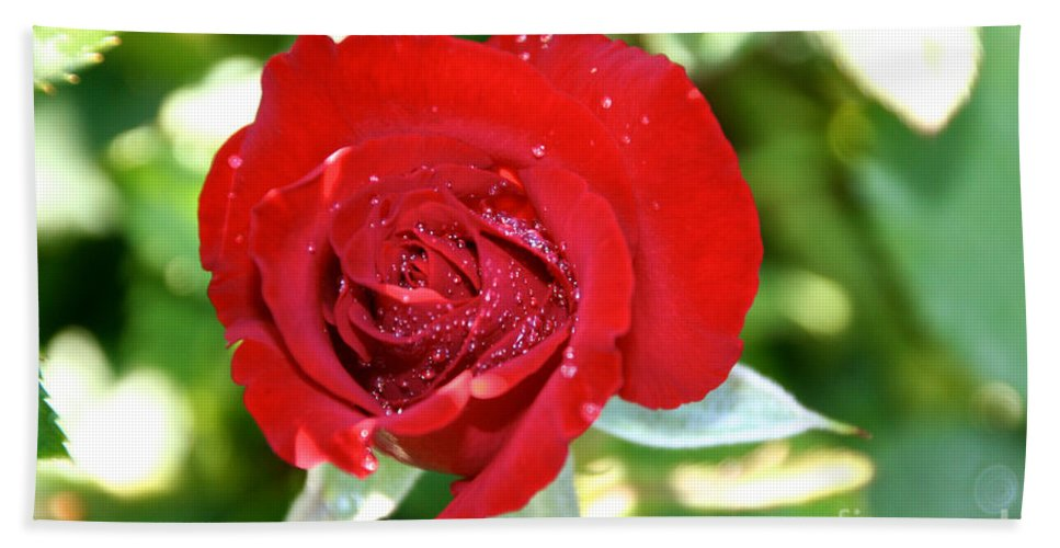Flower Bath Sheet featuring the photograph Ruby Rose Diamond Dust by Susan Herber