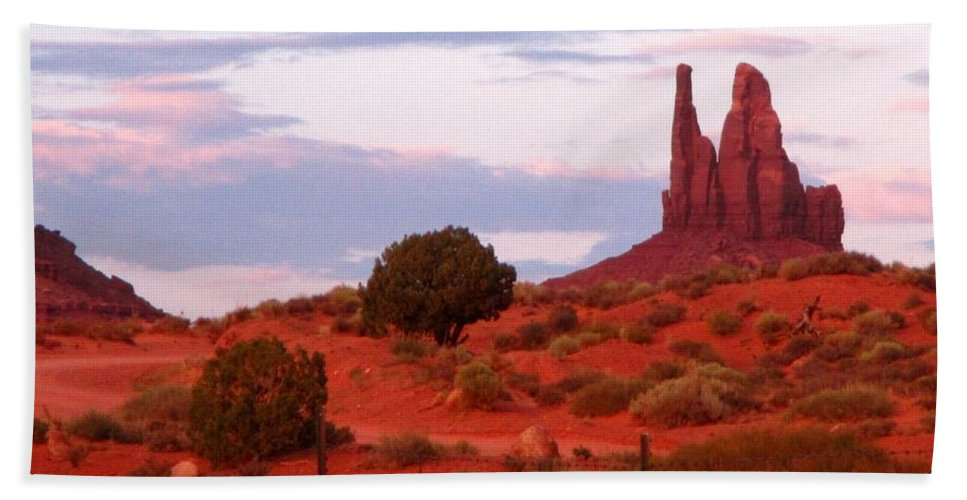 Landscape Hand Towel featuring the photograph Running Cactus by John Malone