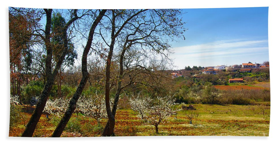 Almond Bath Sheet featuring the photograph Rural Landscape by Carlos Caetano