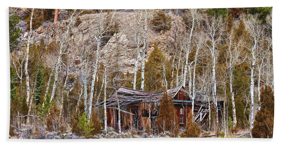 Cabin Bath Sheet featuring the photograph Rural Rustic Rundown Rocky Mountain Cabin by James BO Insogna