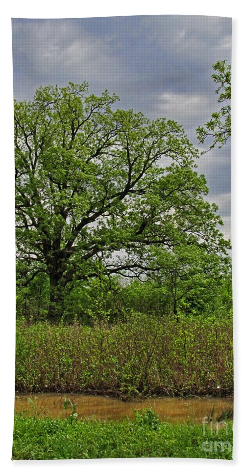 Nature Bath Sheet featuring the photograph Rural Trees II by Debbie Portwood