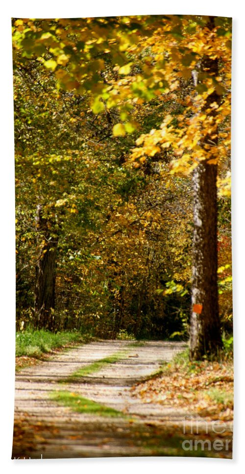 Horticulture Bath Sheet featuring the photograph Rustic Road by Susan Herber