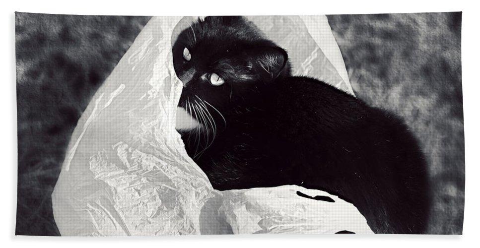 Kitten Bath Sheet featuring the photograph Sack Ninja by Melanie Lankford Photography