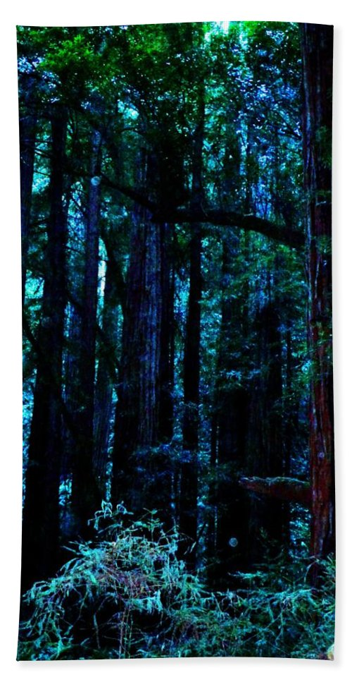 Muir Woods National Monument Bath Sheet featuring the photograph Sacred Space by Cathleen Cario-Reece
