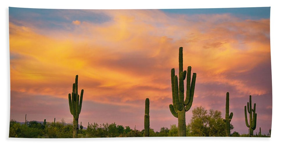 Saguaro Hand Towel featuring the photograph Saguaro Desert Life by James BO Insogna