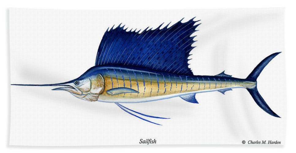 Charles Hand Towel featuring the painting Sailfish by Charles Harden