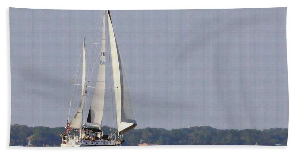 Florida Bath Sheet featuring the photograph Sailing by Debra Forand