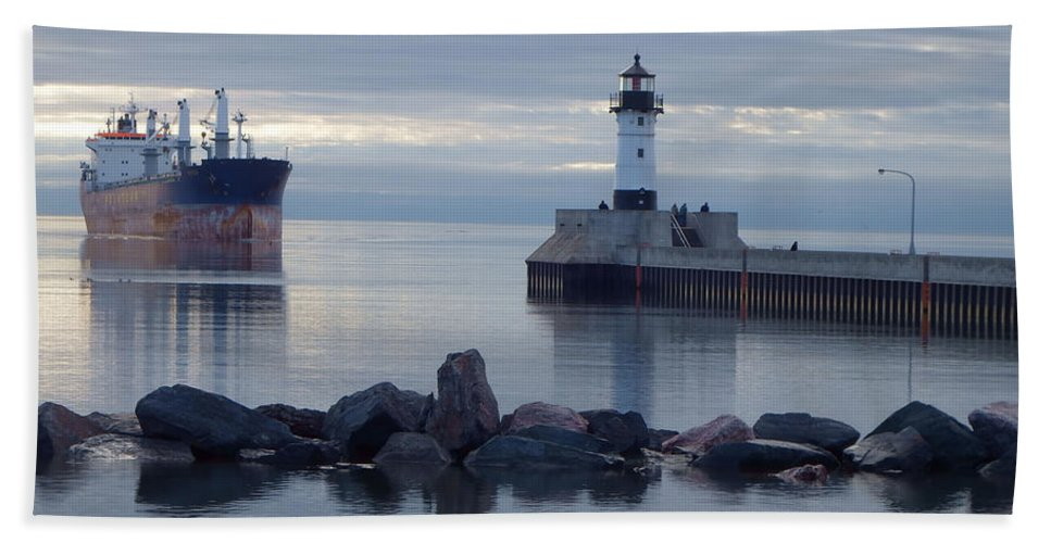 Ships Hand Towel featuring the photograph Saltie by Alison Gimpel