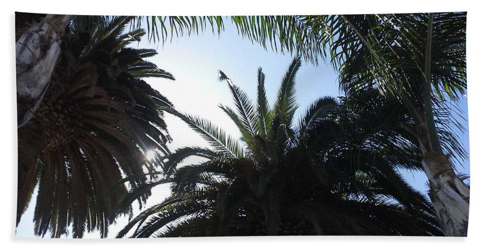 Photograph Bath Sheet featuring the photograph San Diego Breeze by Lori Russell
