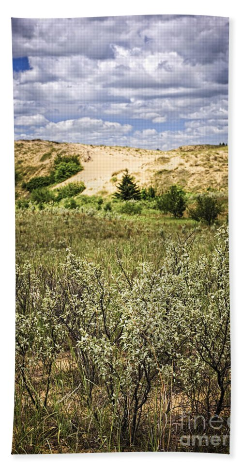 Sand Bath Sheet featuring the photograph Sand Dunes In Manitoba by Elena Elisseeva