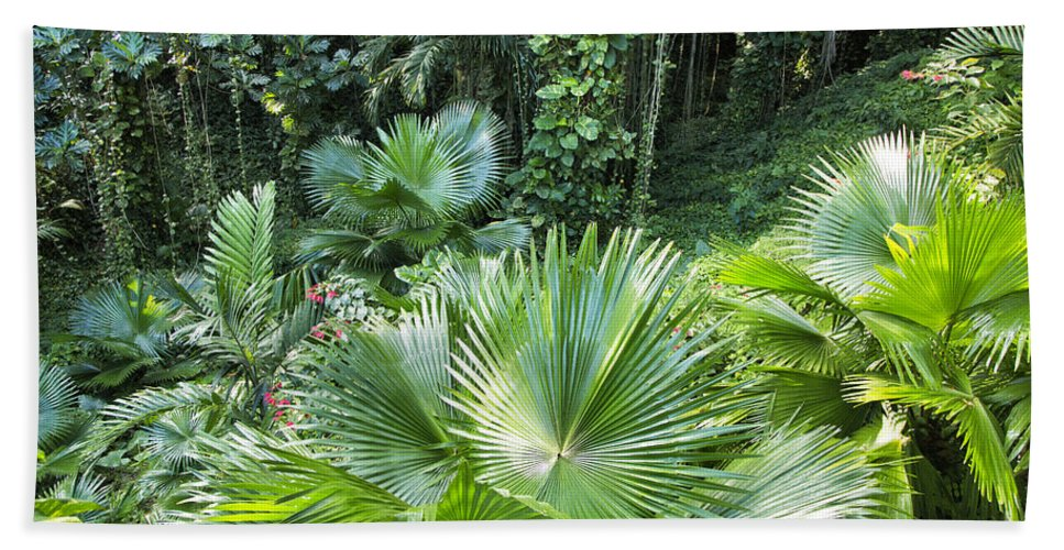 Ferns Bath Sheet featuring the photograph Sandals Royal Plantation Greenery by Timothy Hacker