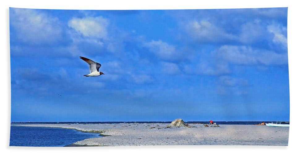 Seagull Bath Sheet featuring the photograph Sandbar Bliss by Marie Hicks