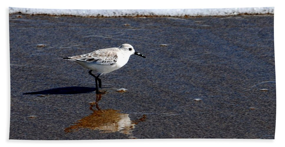Sandpiper Bath Sheet featuring the photograph Sanderling 004 by Larry Ward